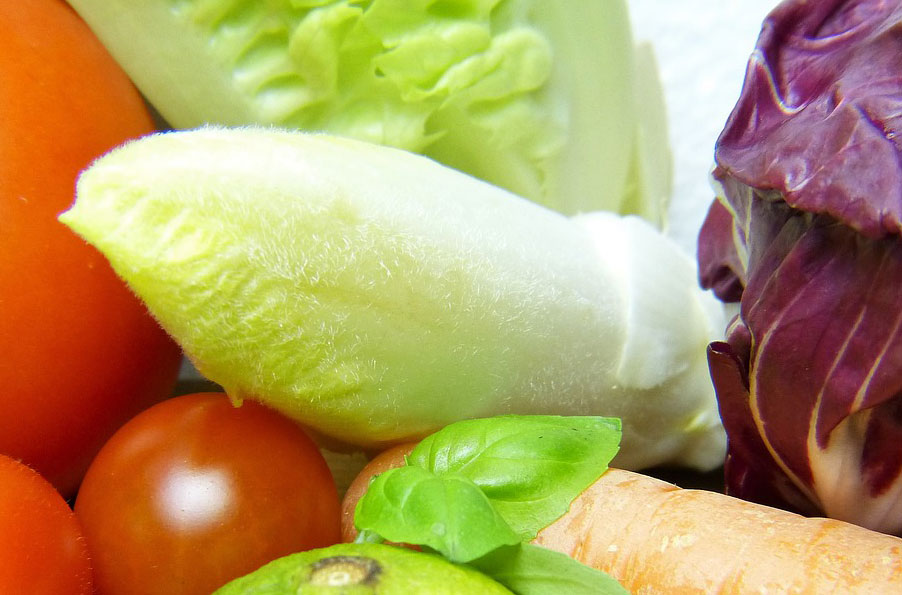Knackig und gesund: Chicorée