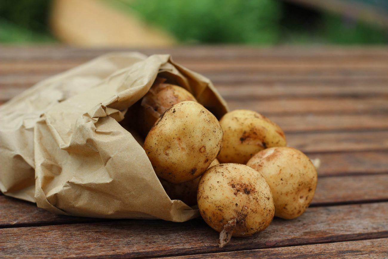 Junge Kartoffeln dämpfen oder rösten