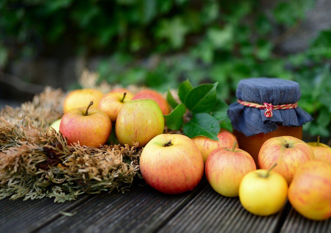 Jetzt gibt es frische Äpfel
