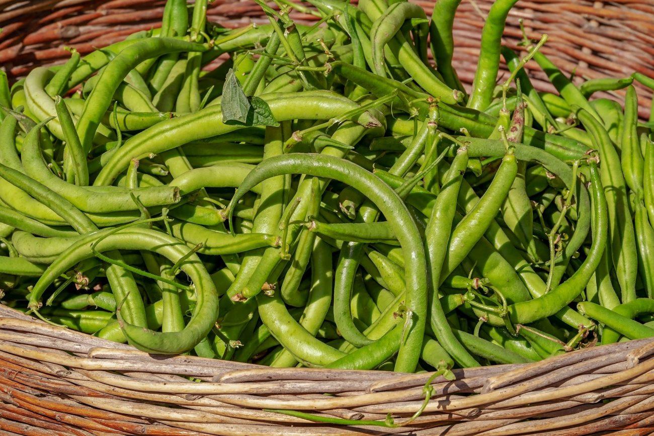 Grüne Bohnen immer gut durchkochen